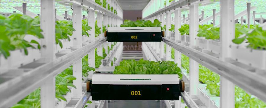 SANANBIO UPLIFT, the Unmanned Vertical Farming System
